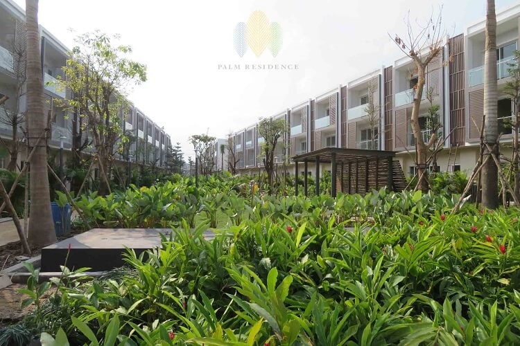 tien do nha pho palm residence
